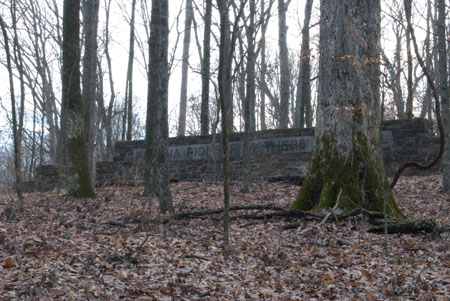 Old Growth: Indiana Pioneer Mothers Memorial Forest: December 28 2008 |