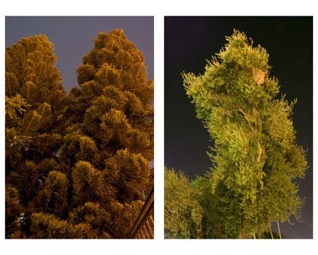 light-pollution-1