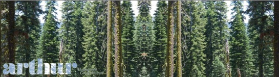 Arthur - Desolation Wilderness