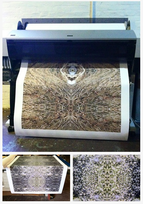 Color Wheel Print Images