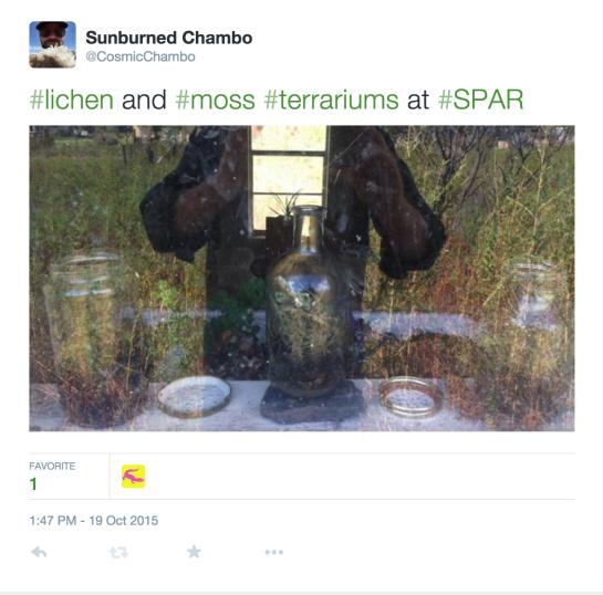 Screen Shot 2015-10-24 at 5.22.16 PM